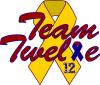 team 12 logo
